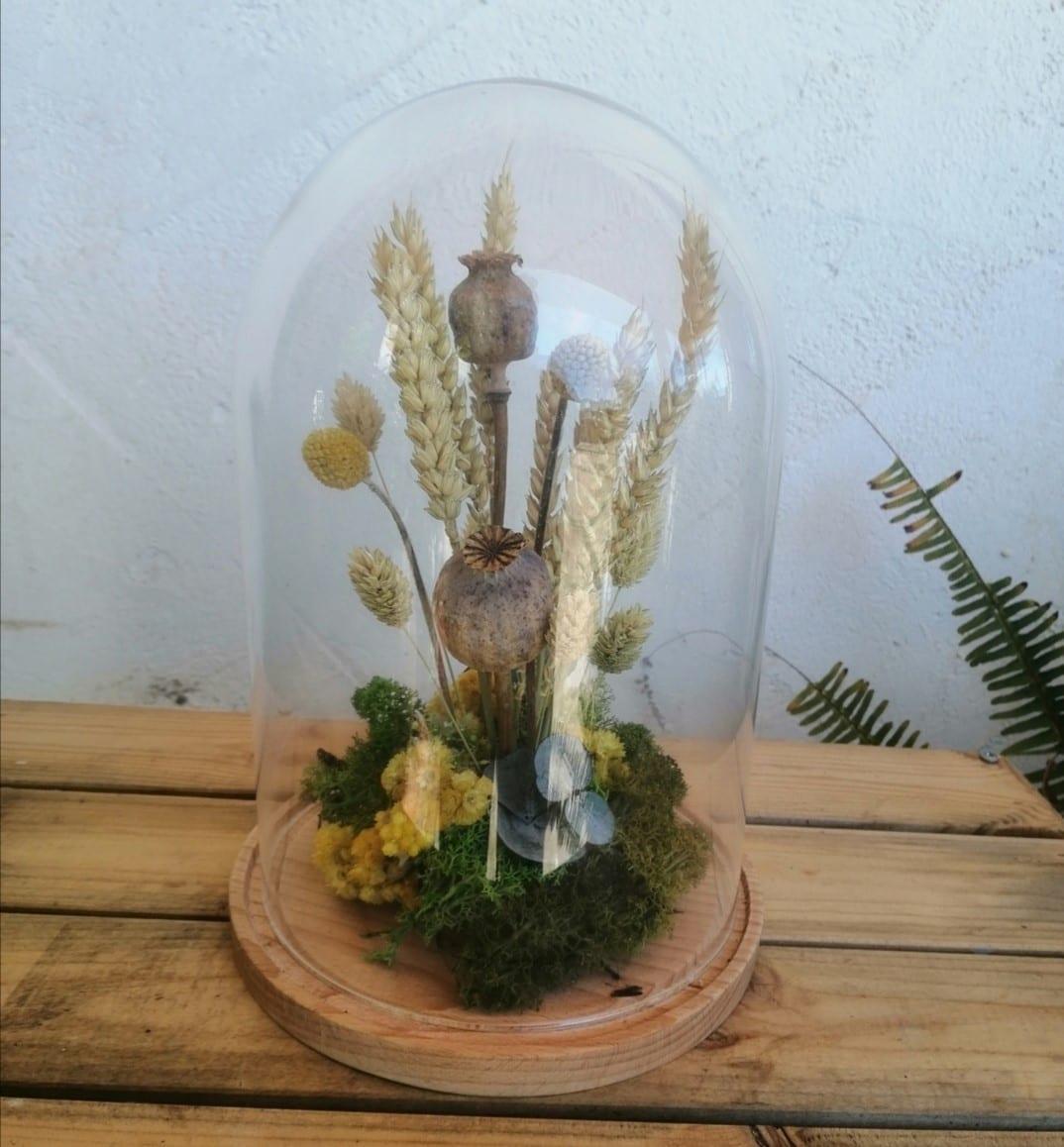 Cúpula de flores Cartagena Floristería Oasis