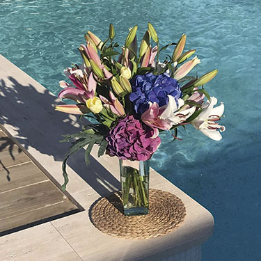 Decoración de exteriores hogar y flores Cartagena Oasis Floristas